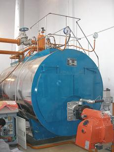锅炉灭火保护系统
